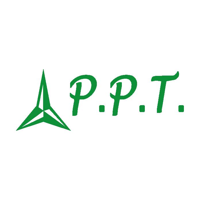 ppt-01